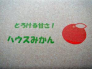 718-insatu1.jpg